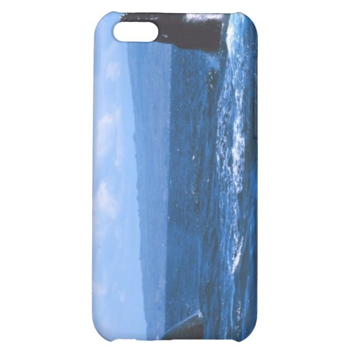 Humpback Whales Jumping iPhone 5C Case