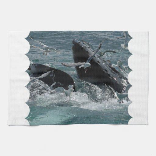 Humpback Whales  Kitchen Towel