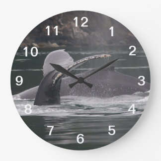 Humpback whales large clock