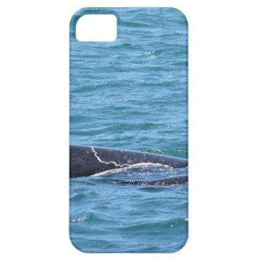 Beach Themed HUMPBACK WHALES MACKAY QUEENSLAND AUSTRALIA iPhone SE/5/5s CASE
