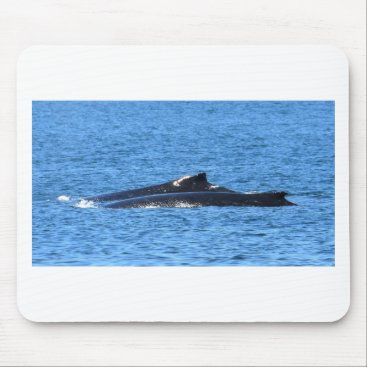 Beach Themed HUMPBACK WHALES MACKAY QUEENSLAND AUSTRALIA MOUSE PAD