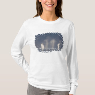 Humpback Whales Megaptera novaeangliae) T-Shirt