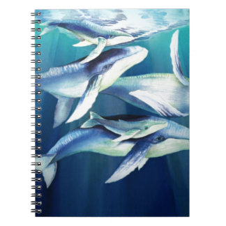 Humpback Whales Notebook