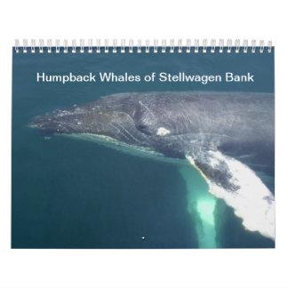 Humpback Whales of Stelwagen Bank Calendar