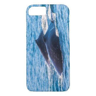 Humpback Whales Off Surfers Paradise Australia iPhone 7 Case
