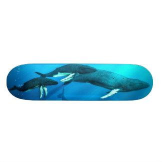 Humpback Whales Skateboard Deck
