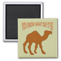 HUMPDAY ! CAMEL HUMP DAY YOU KNOW WHAT DAY IT IS MAGNET