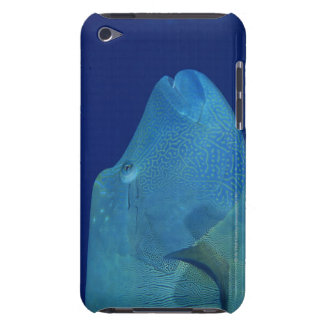Humphead Wrasse 2 Case-Mate iPod Touch Case