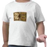 Humphries disecó el mapa del mundo camiseta