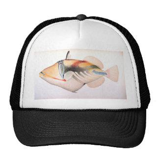 Humuhumunukunuku apua'a Hat