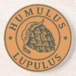 Humulus lupulus hop for craft beer sandstone coaster