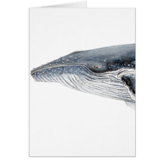 Hunchbacked whale - yubarta - picture card