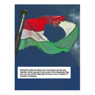 Hungarian Flag of the Revolution Postcard