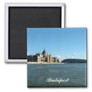 Hungarian Parliament and the Danube 2 Inch Square Magnet