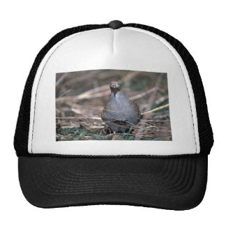 Hungarian partridge trucker hat