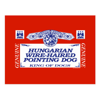 Hungarian Wire-Haired Pointing Dog Postcard
