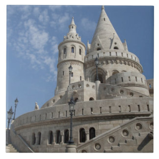 Hungary, capital city of Budapest. Buda, Castle 2 Tile