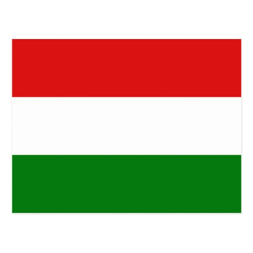 Hungary Flag Postcard