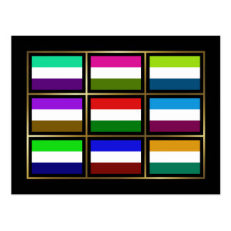 Hungary Multihue Flags Postcard