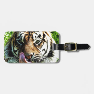 Hunger Luggage Tag