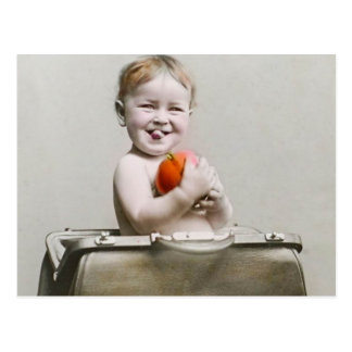 Hungry Baby Cute Little Peach in Handbag Vintage Postcard