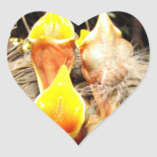 Hungry Baby Robins Heart Sticker