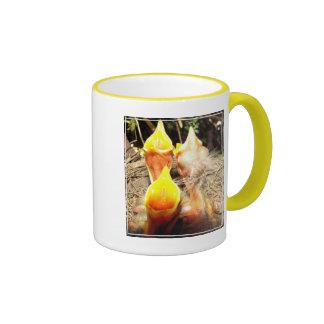 Hungry Baby Robins Ringer Mug