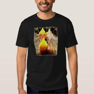 Hungry Baby Robins Shirt