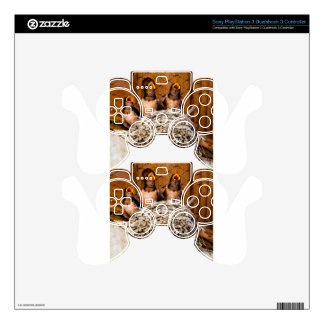 Hungry Baby Swallows - Antelope Island - Utah Decal For PS3 Controller