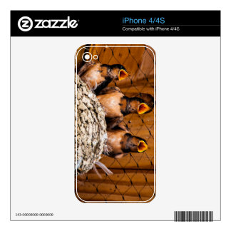 Hungry Baby Swallows - Antelope Island - Utah Skin For The iPhone 4S