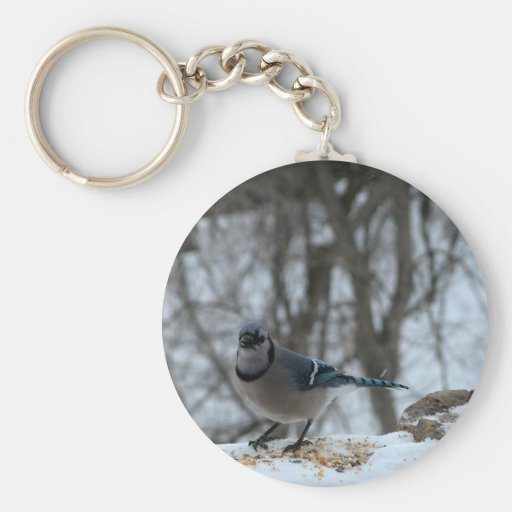 Hungry Blue Jay Basic Round Button Keychain