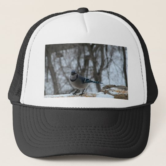 Hungry Blue Jay Trucker Hat