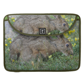 """Hungry Bunny 15"""" MacBook Sleeve Sleeves For MacBook Pro"""