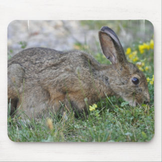 Hungry Bunny Mouse Pad