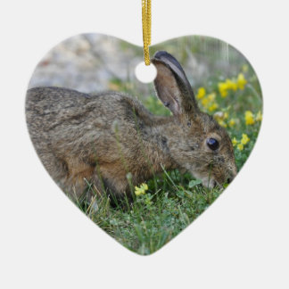 Hungry Bunny Ornament