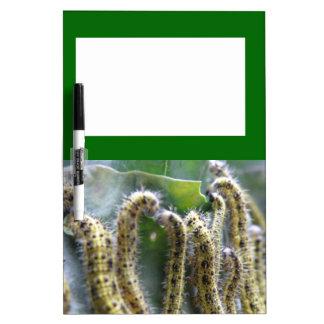 Hungry Cabbage White Caterpillar Memo Board