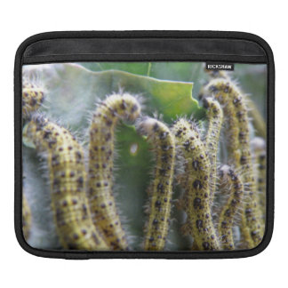 Hungry Cabbage White Caterpillars IPad Sleeve