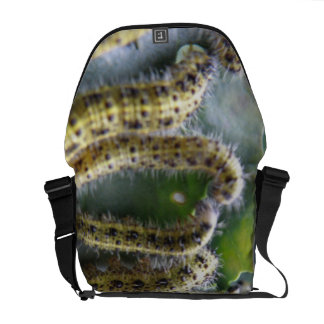 Hungry Cabbage White Caterpillars Messenger Bag
