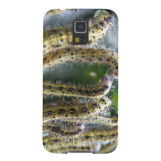 Hungry Cabbage White Caterpillars Samsung Galaxy Cases For Galaxy S5