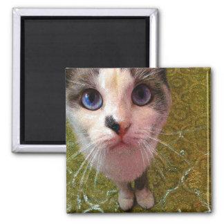 Hungry Cat Fridge Magnet