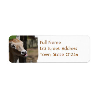 Hungry Deer Mailing Labels