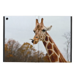 Hungry Giraffe Wild Animals Photo iPad Air Cover