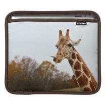 Hungry Giraffe Wild Animals Photo iPad Sleeve