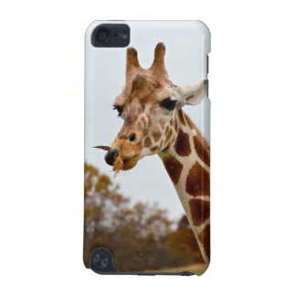 Hungry Giraffe Wild Animals Photo iPod Touch (5th Generation) Cover