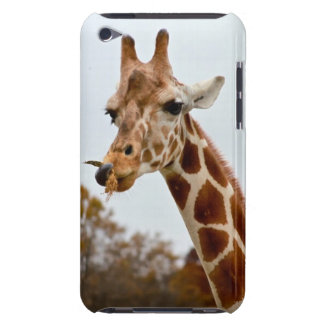 Hungry Giraffe | Wild Animals Photo iPod Touch Case-Mate Case