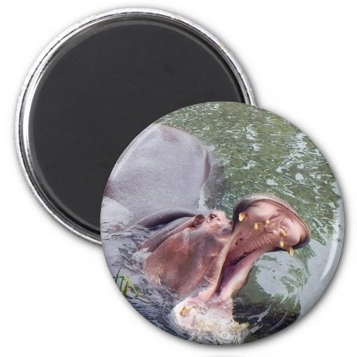 Hungry Hippo Mouth Photo 2 Inch Round Magnet