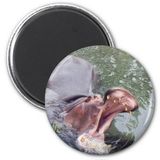 Hungry Hippo Mouth Photo Magnet