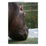 Hungry Hippo Notecard Greeting Card