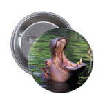 Hungry Hippo Pinback Button