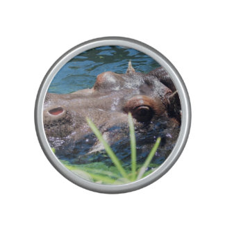 Hungry Hippo Speaker